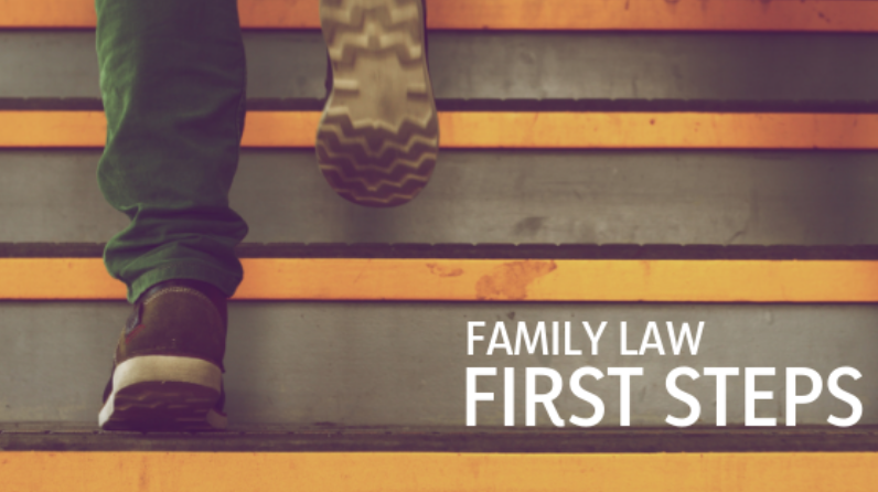 Family Law First Steps